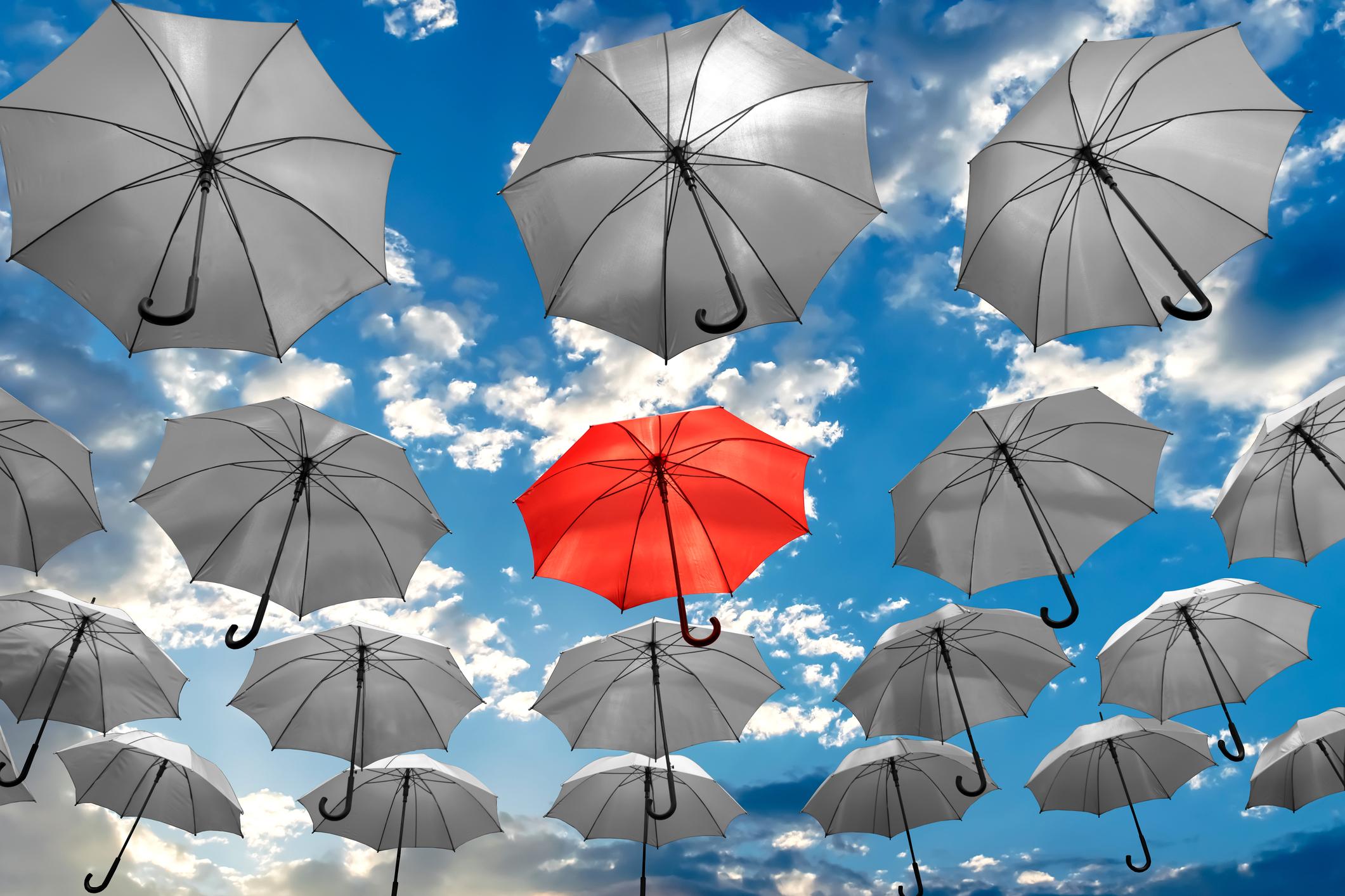 Guidare l'azienda: coraggio, passione e resilienza. Strumenti per un'impresa di successo